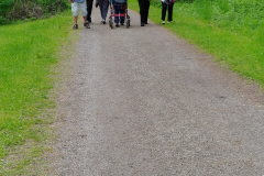 7. Kävelyllä metsässä - Skogspromenad