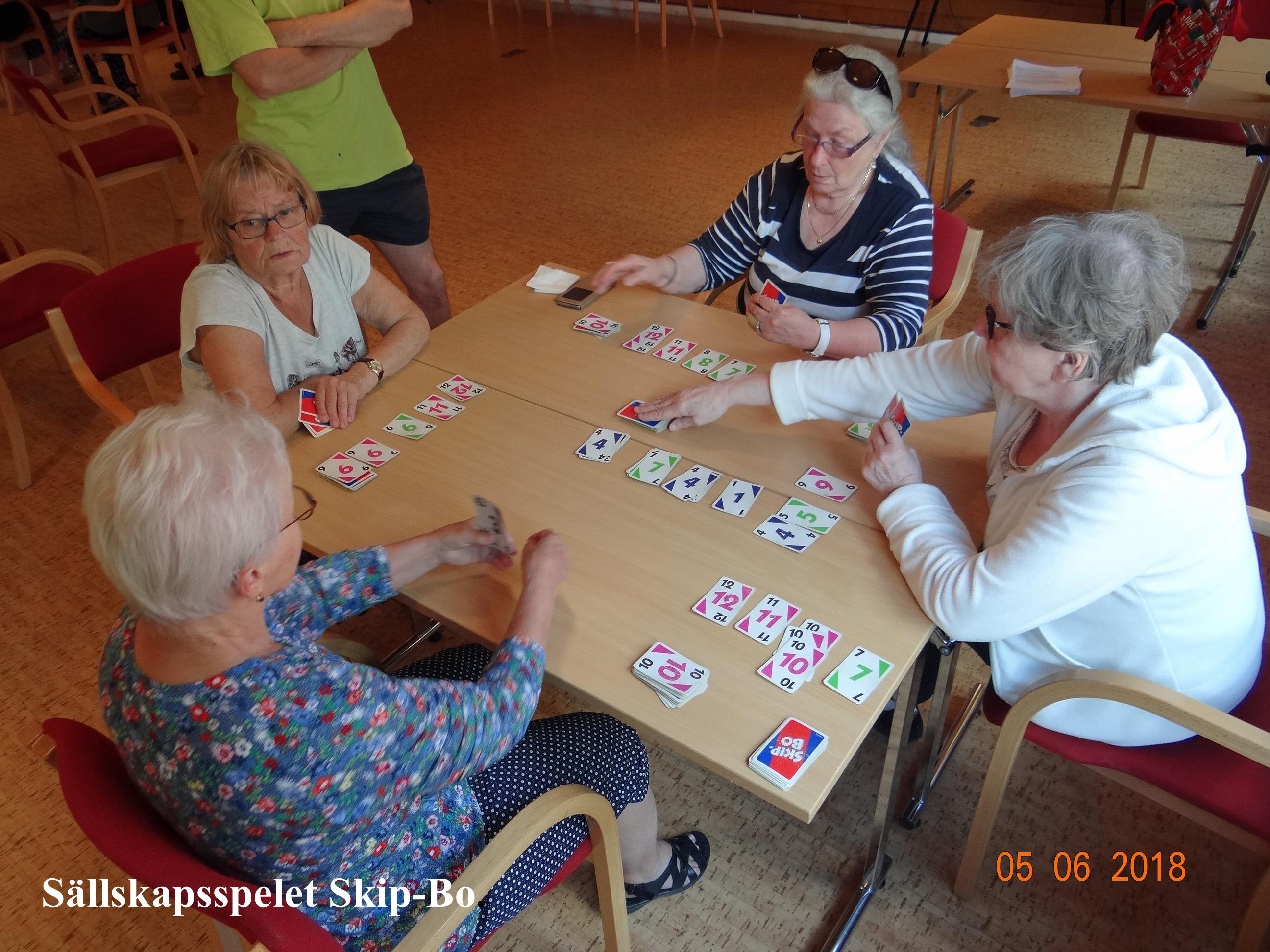 Kortinpeluuta-Kortspel